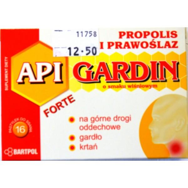 API-GARDIN-PROPOLIS SMAK WISNIA